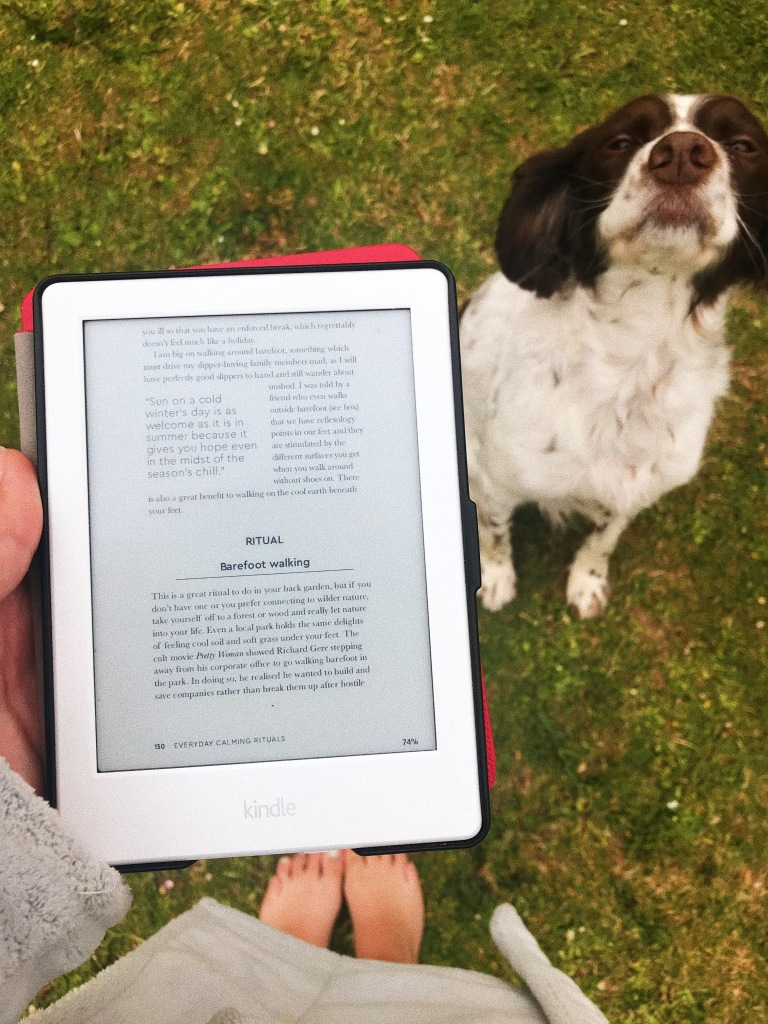 E-book reader with background of grass and dog